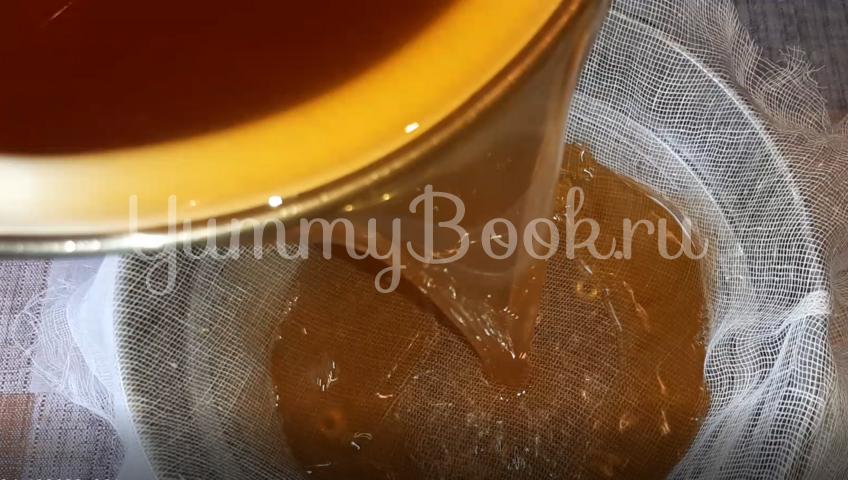 Домашнее «шампанское» (настойка) из плодов алычи - шаг 2