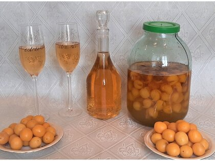 Домашнее «шампанское» (настойка) из плодов алычи