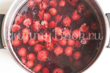 Холодный сладкий вишнёвый суп - шаг 1