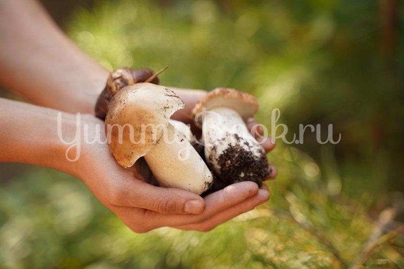 Ароматный суп из белых грибов - шаг 4
