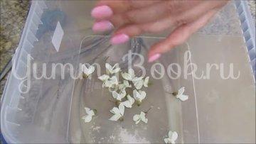 Варенье из цветков белой акации с лимоном (акациевый мёд) - шаг 2