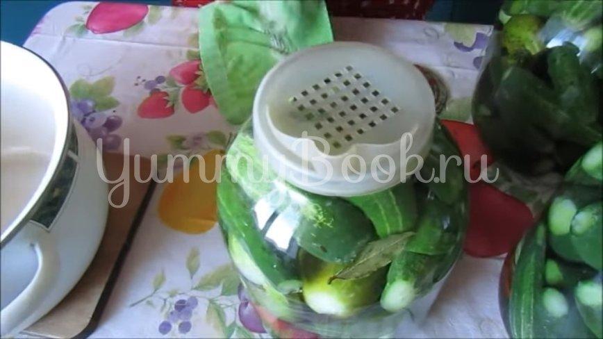 Огурцы с лимонной кислотой на зиму - шаг 3