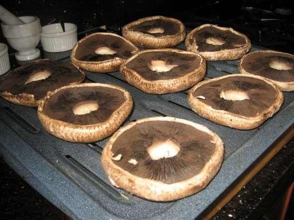 Запеченные перепелки с грибами, пошаговый рецепт с фото